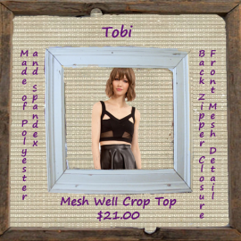 Mesh Well Crop Top