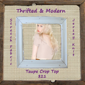 Taupe Crop Top